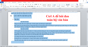 cach-bo-formatting-trong-word-2010